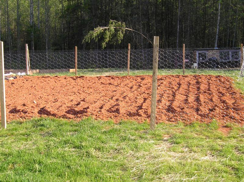 Inexpensive Garden Fencing O New Life On A Homestead