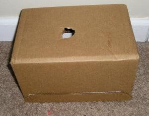 candling box