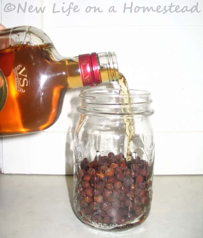covering berries with brandy