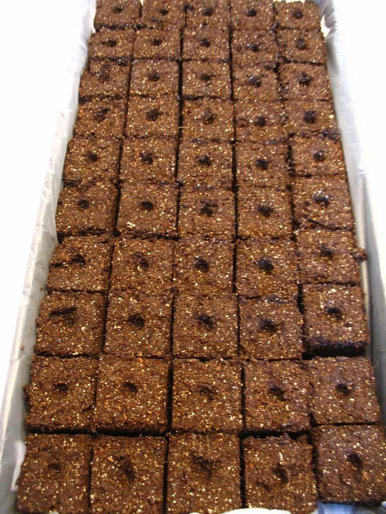 soil blockers