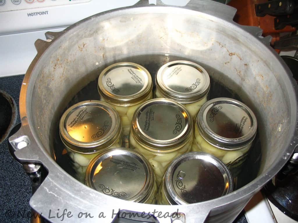 canning potatoes-9