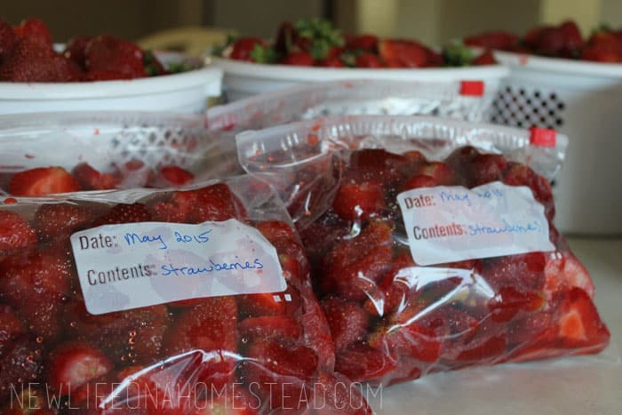 how to freeze strawberries (7)