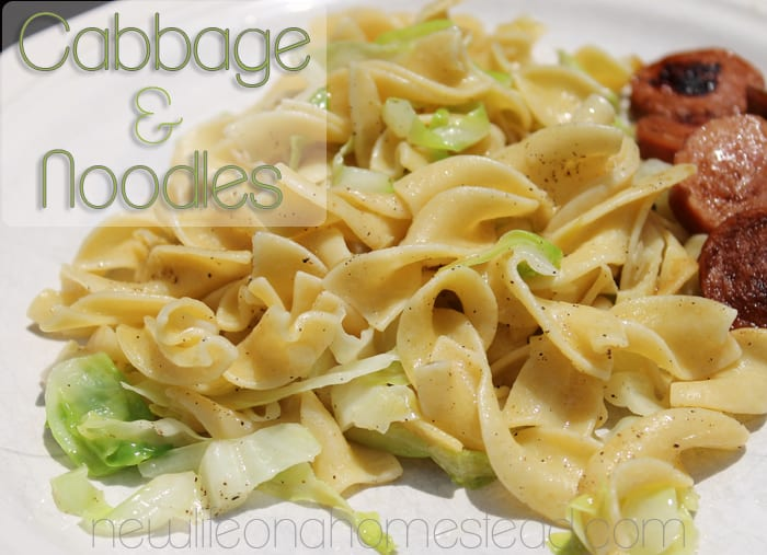 This cabbage and noodles recipe is awesome! Feeds my family of six for less than $3!