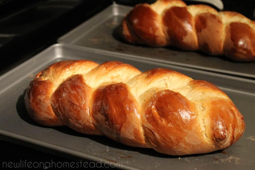 fresh baked challah