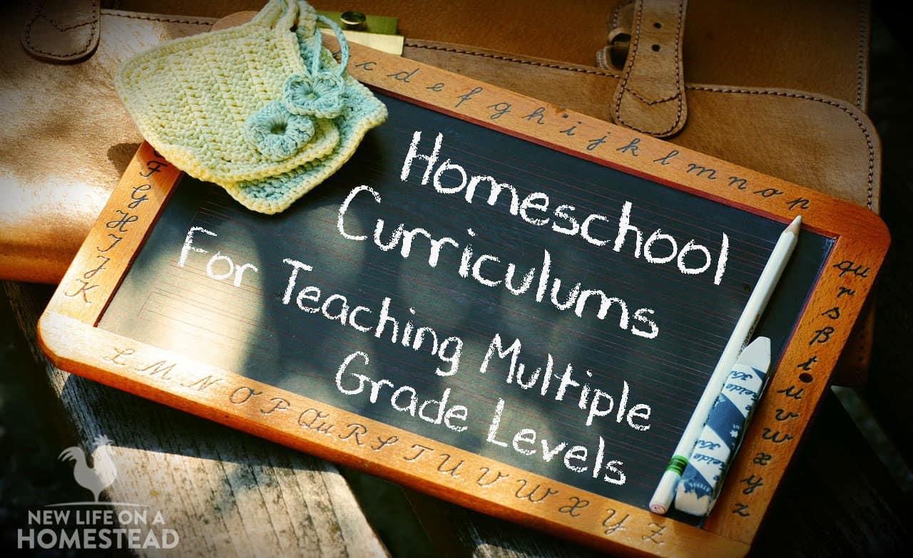 Homeschool curriculums for teaching multiple grade levels new 54 fandeluxe Choice Image