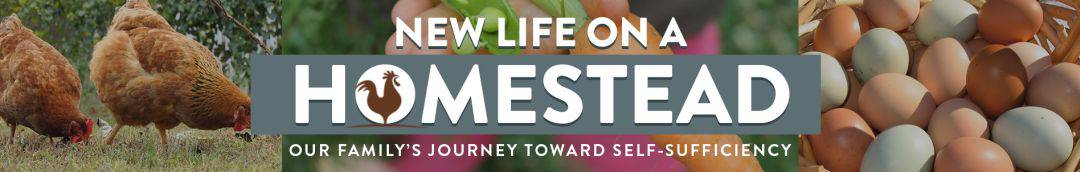 New Life On A Homestead | Homesteading Blog