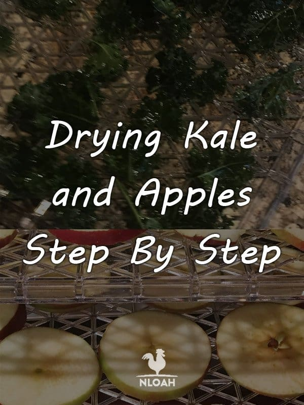 drying kale and apples pinterest