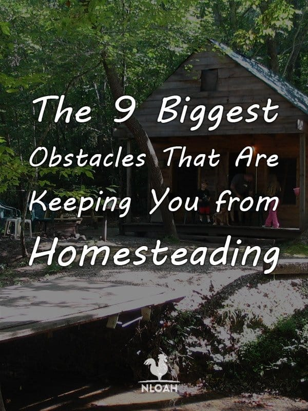 homesteading obstacles pinterest