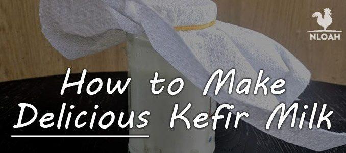 How to Make Kefir Milk featured