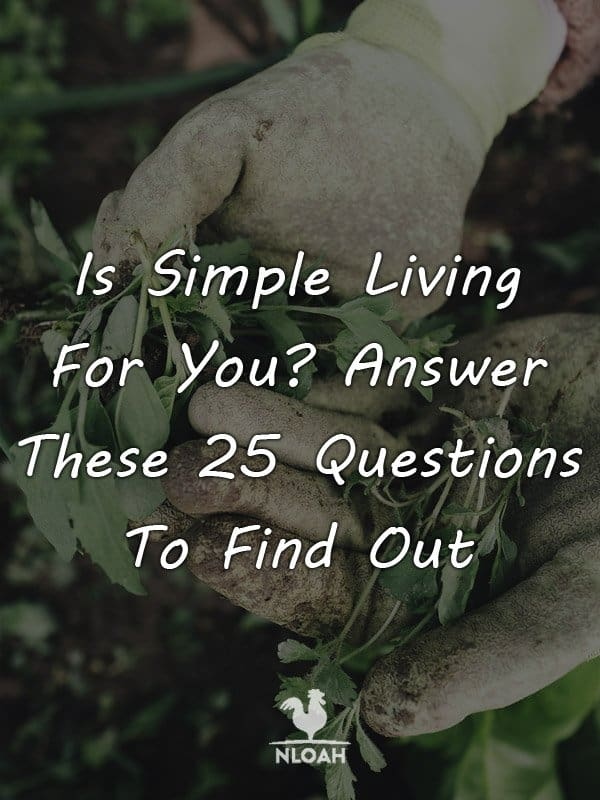 simple living pinterest