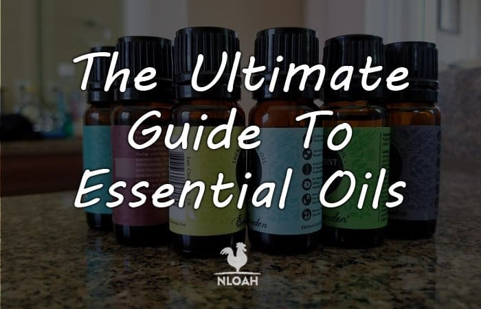 The Ultimate Guide To Essential Oils featured