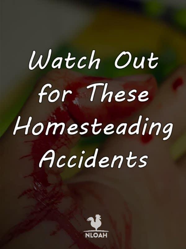 homesteading accidents pinterest