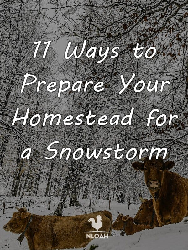 prepare homestead snowstorm pinterest