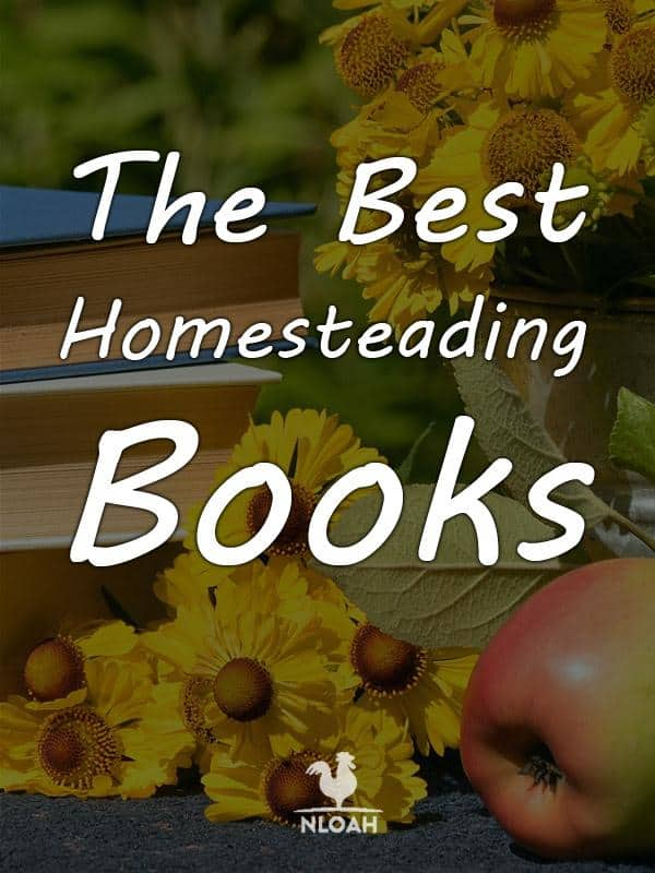 best homesteading pinterest