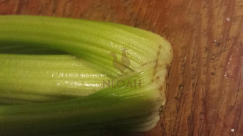 celery 1