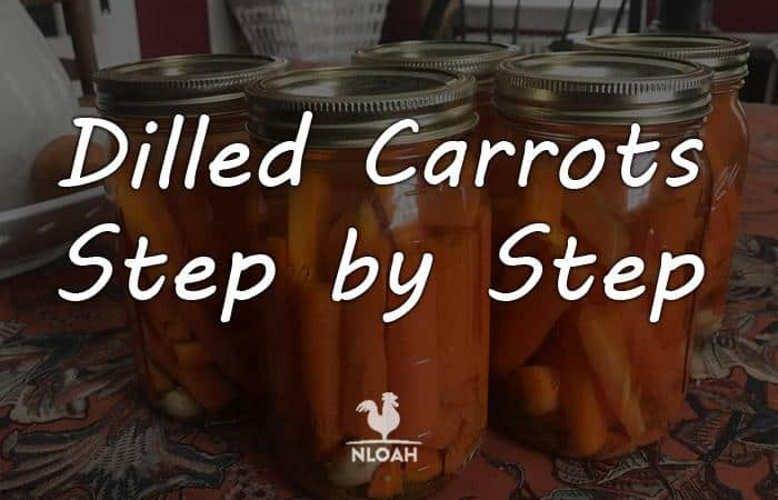 dilled carrots featured