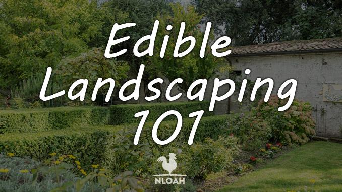 edible landscaping featured