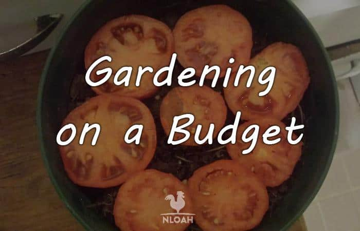 gardening budget featured