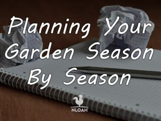 planning garden year round featured