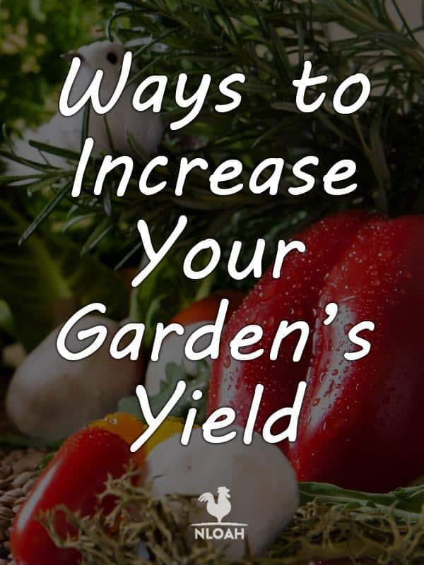 garden yield pinterest