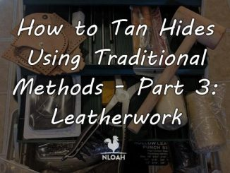 hide tanning eatherwork 3 featured