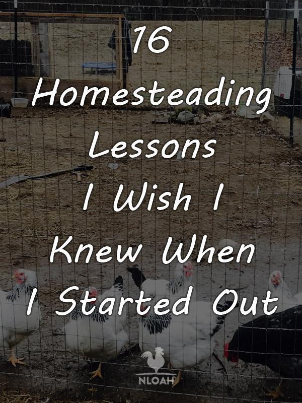 homesteading_lessons_pinterest