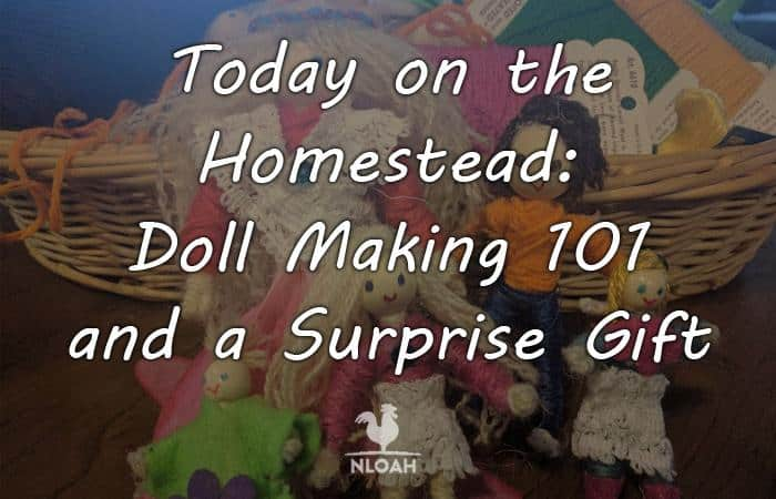 today on the homestead dolls main