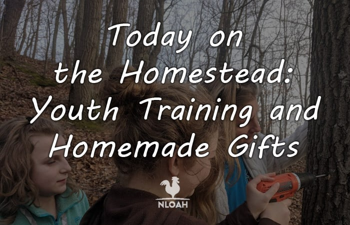 today on the homestead youth Training featured