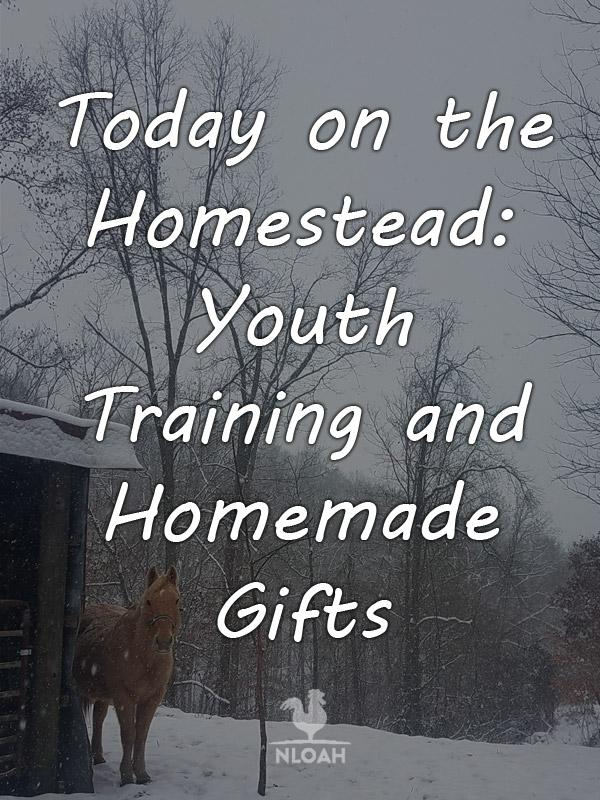 today on_the homestead youth Training pinterest