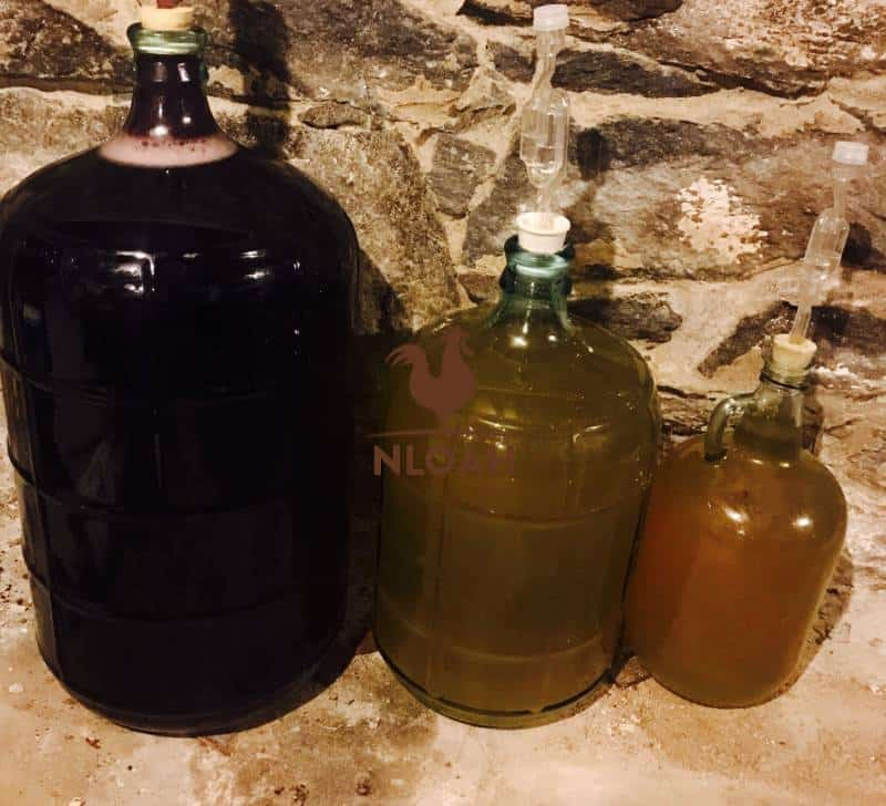 Dandelion and elderberry wine, and some hard cider