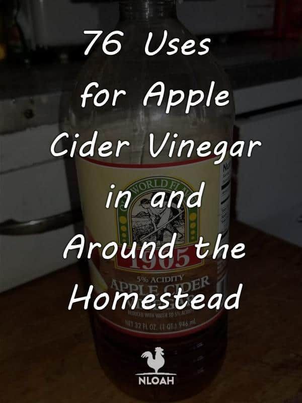 apple cider vinegar pinterest