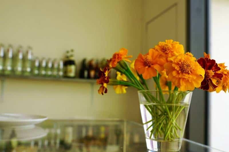 marigolds on table
