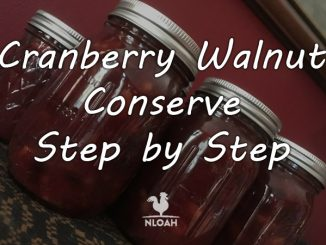 cranberry walnut conserve logo