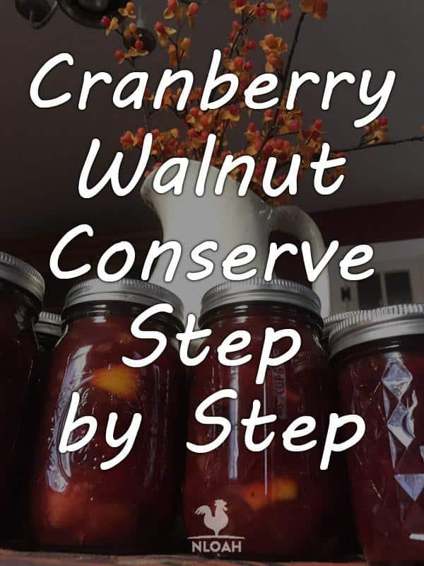 cranberry walnut conserve pinterest