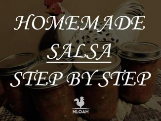 homemade salsa logo
