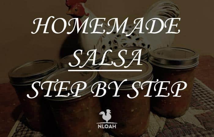 homemade salsa logo