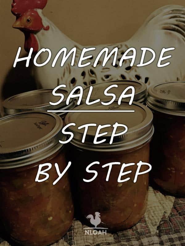 homemade salsa pinterest