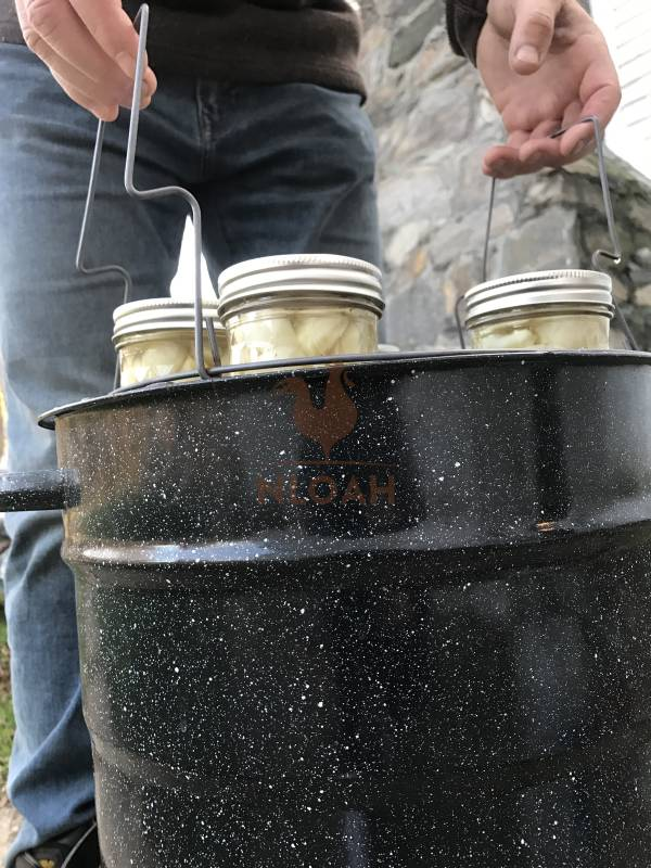 lowering canning jars in canner