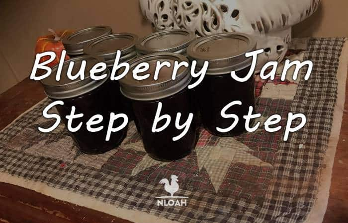 blueberry jam main