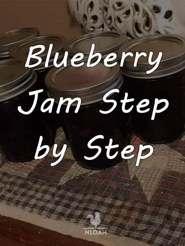 blueberry jam pinterest