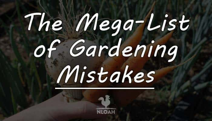 The Mega-List of Gardening Mistakes