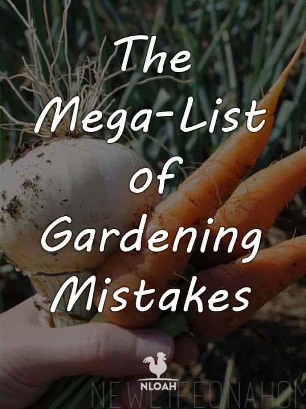 gardening mistakes pinterest