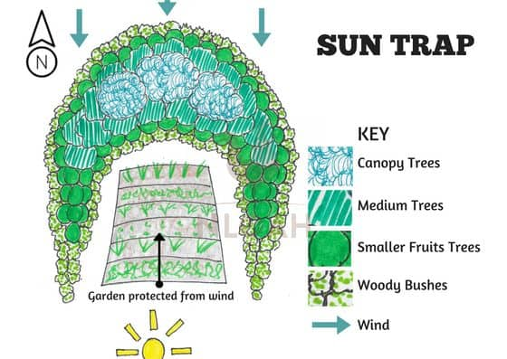 Sun Trap for passive solar heating and wind protection