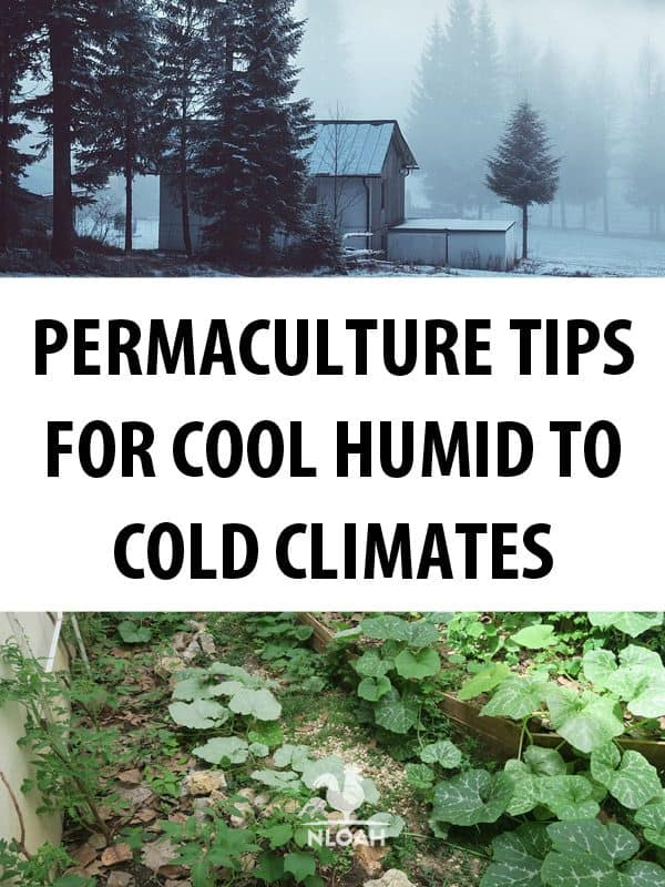 permaculture 101 pinterest