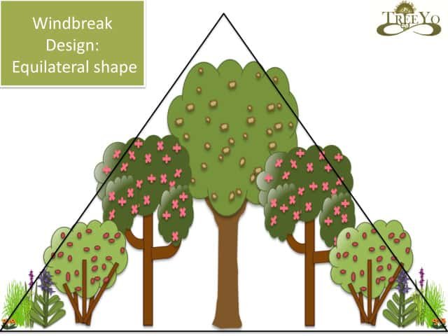 windbreak design equilateral shape