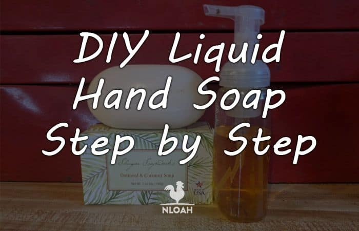 diy liquid hand soap logo
