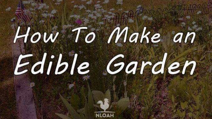 edible garden logo