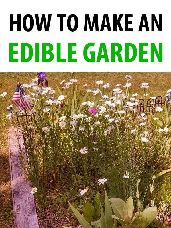 edible garden pinterest