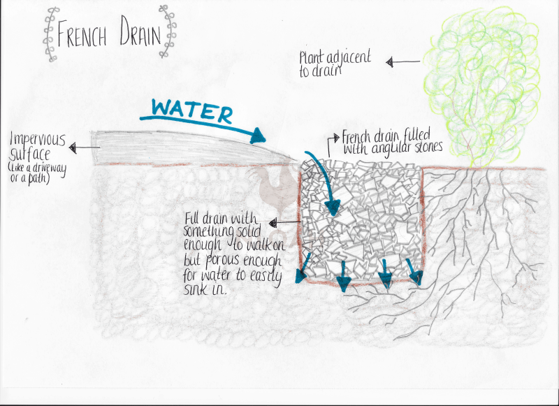 French Drain Diagram Stunning Finished With French Drain Diagram