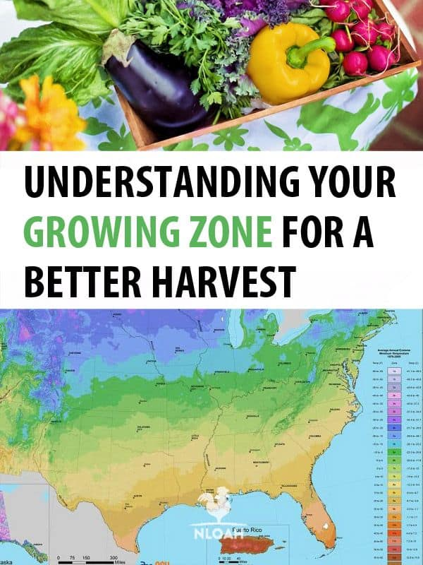 growing zones pinterest